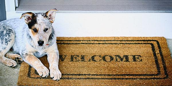 Welcoming Your New Neighbors